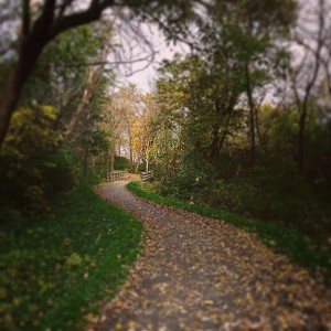 Fox River Trails