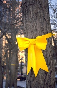 photo cred: wp.yellowribbonamerica.org